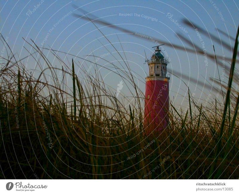 Ocean Moody Wind Beach dune Lighthouse Netherlands Marram grass Texel