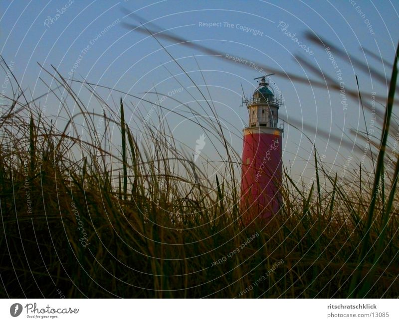 Ocean Moody Wind Beach dune Lighthouse Netherlands Marram grass Texel