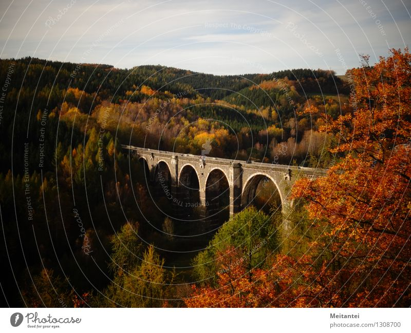 Hetzdorf Viaduct Hiking Nature Landscape Autumn Tree Leaf Forest Hill Valley hunt village Germany Europe Bridge Manmade structures viaduct Tourist Attraction