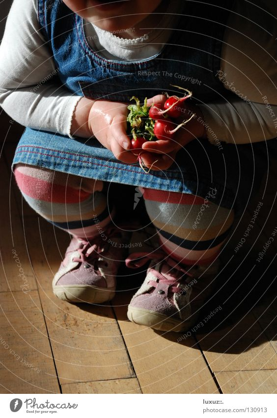 Child Girl Joy Laughter Healthy Fresh Vegetable Harvest Impish Crouching Agriculture Radish