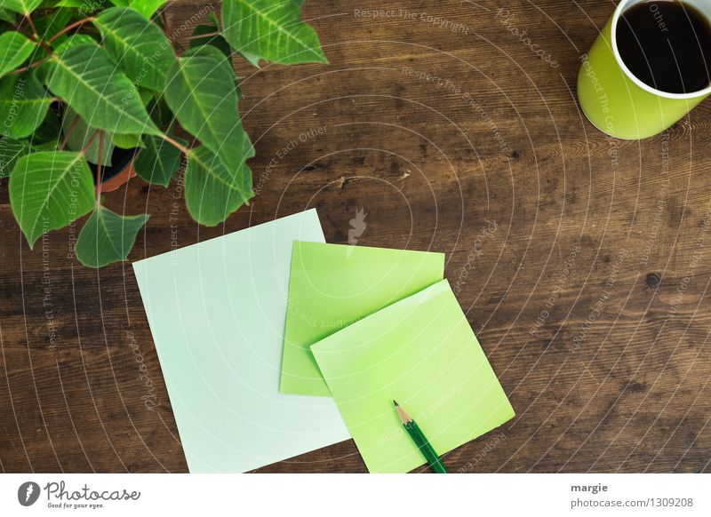 Green slip of paper with pen, a cup of coffee and a potted plant Hot drink Coffee Cup Desk Work and employment Office work Workplace Plant Flower Leaf