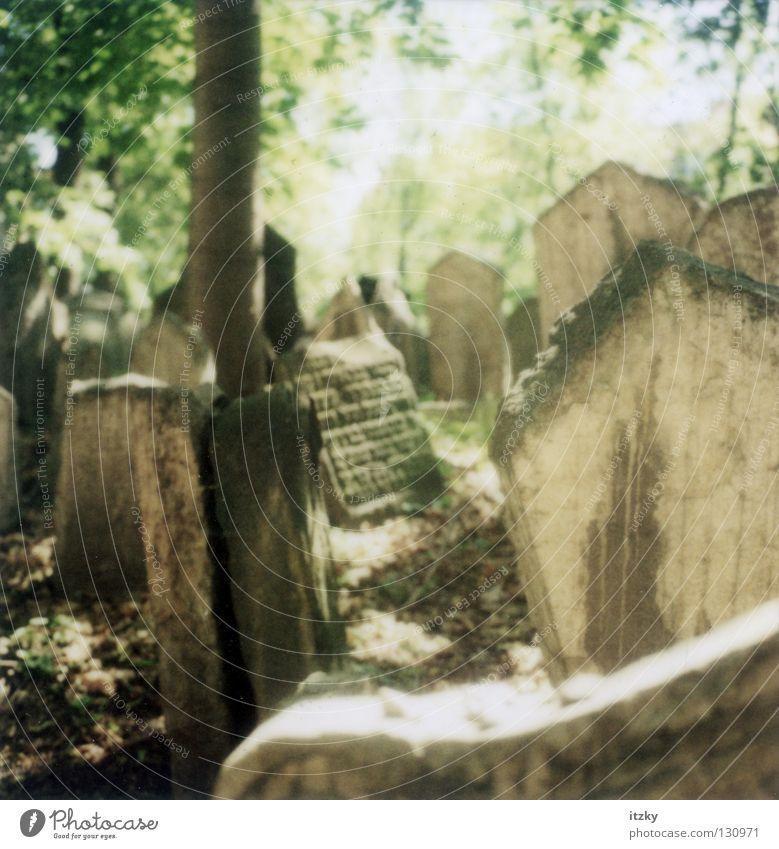 Sun Grief Distress Cemetery Grave Tombstone Judaism Czech Republic Prague Tomb