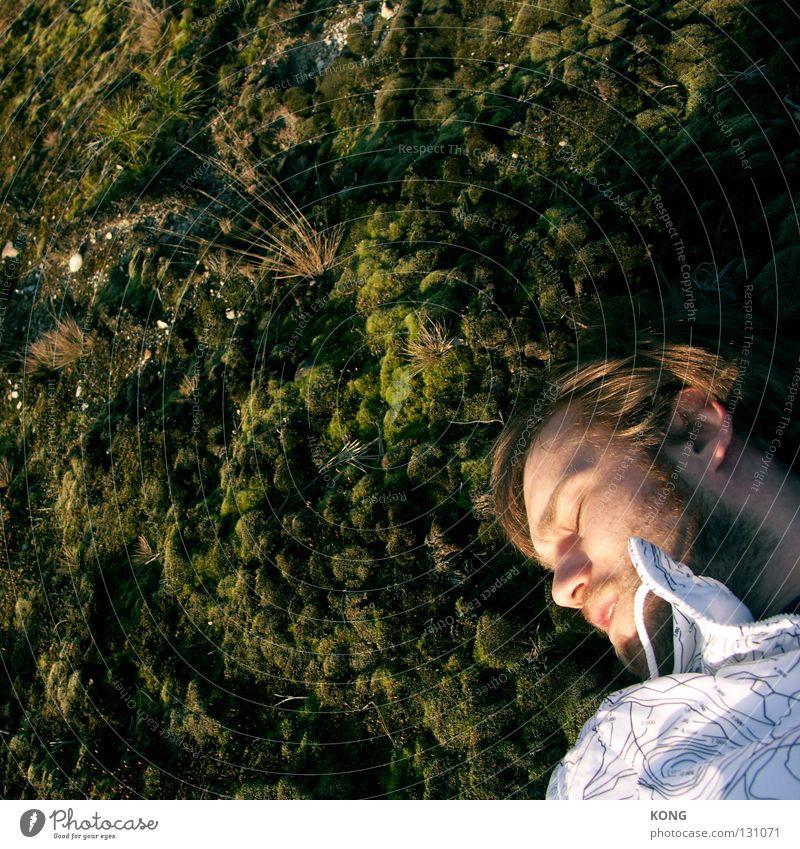 Man Nature Green Sleep Bed Transience Good night