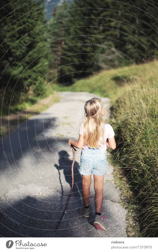 hiking day Human being Feminine Child Girl Infancy 1 3 - 8 years Environment Nature Sunlight Summer Beautiful weather Forest Observe Discover Relaxation Walking