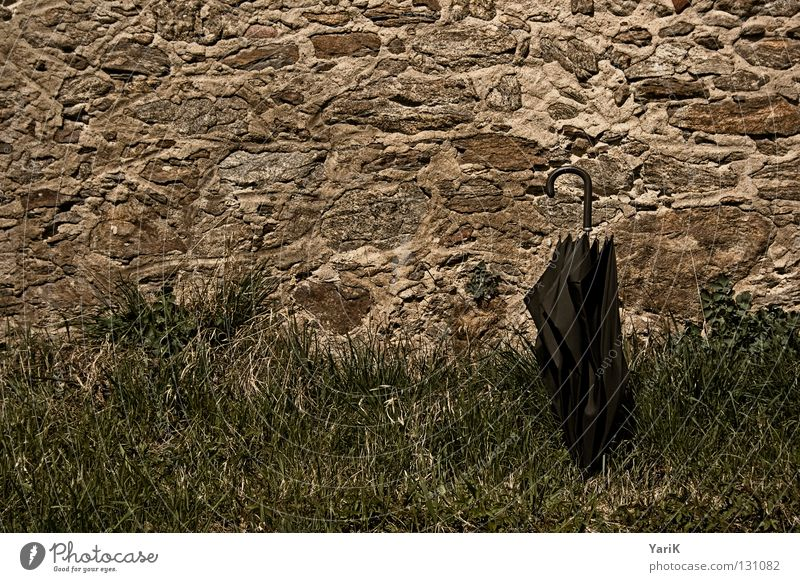 Old Green Joy Black Dark Meadow Wall (building) Grass Stone Wall (barrier) Brown Umbrella Derelict Decline Stone wall