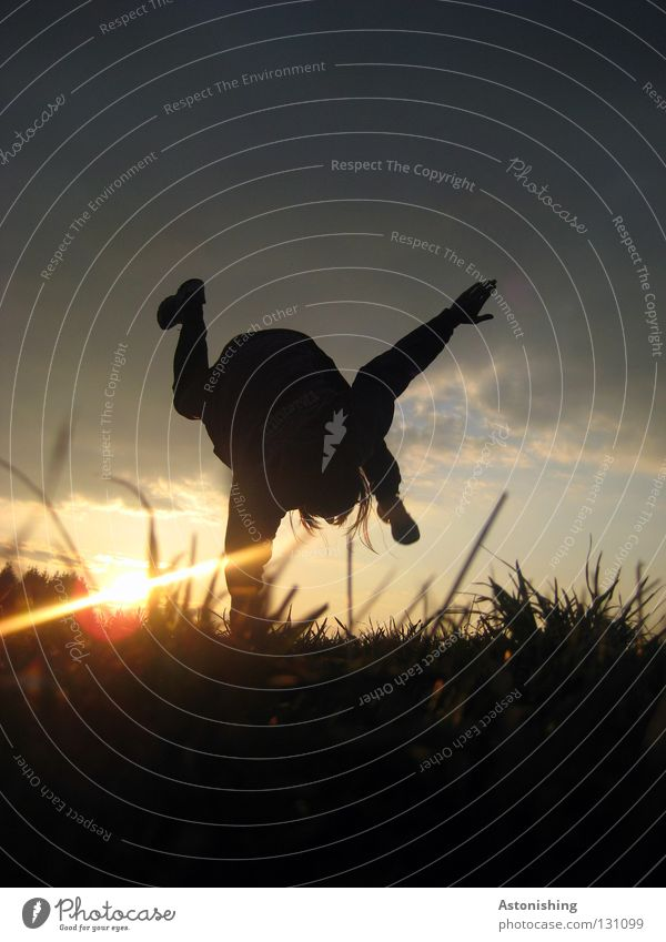 Human being Sky Hand Sun Joy Meadow Dark Grass Movement Legs Feet Blade of grass Handstand