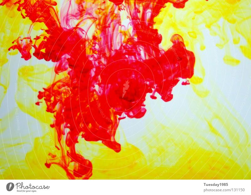 Battle of colours 1 Red Yellow White Progress Colour contrasted Water Illuminate