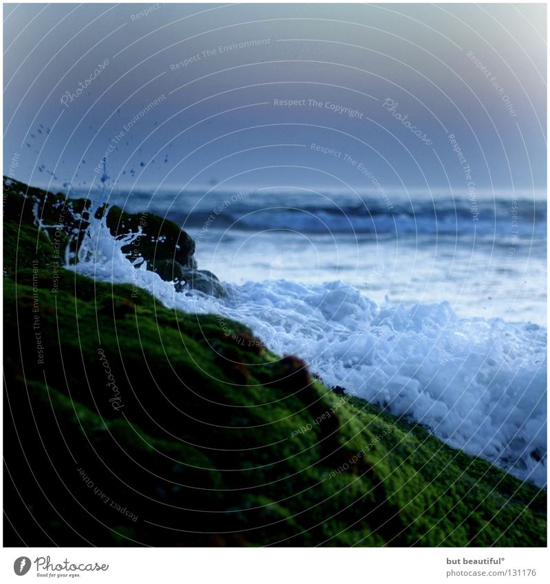 Beautiful Ocean Green Summer Beach Calm Sadness Waves Coast Wind Soft Delicate High tide Hissing