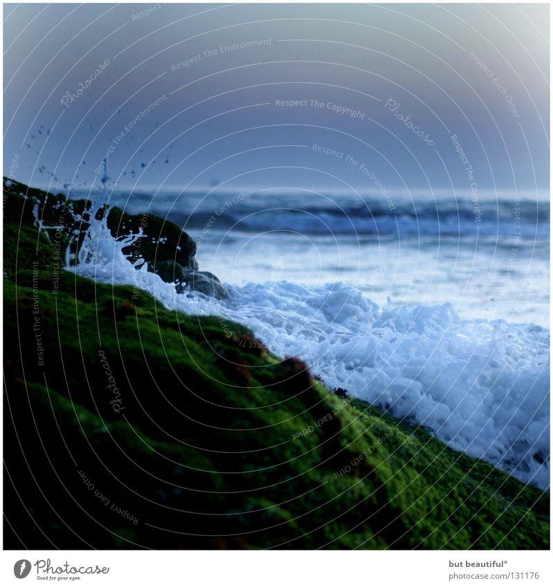wave breaker° Ocean Summer Coast Waves Calm Hissing Green Delicate Soft Beach Beautiful Wind High tide Sadness