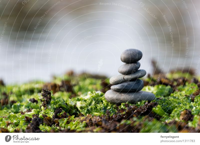 Balance and harmony Green Water Emotions Religion and faith Gray Art Stone Contentment Equal