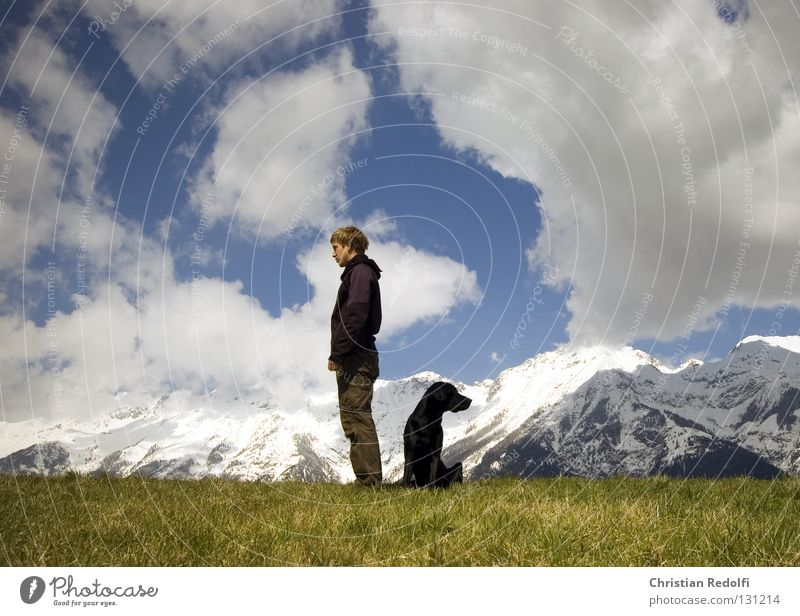 man with dog searches.... Field Hill Grass Dog Labrador Meadow Clouds Spring day To go for a walk Green Black White Man Alpine pasture Ignore Vantage point