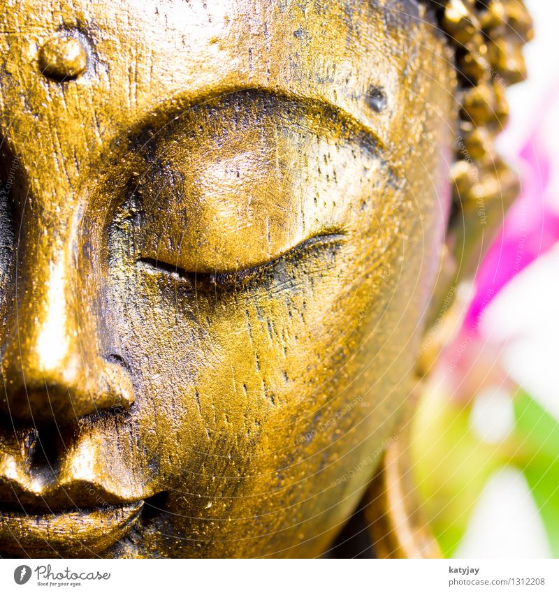 Human being Relaxation Calm Face Religion and faith Art Power Body Gold Force Culture Wellness Intellect Peace Asia