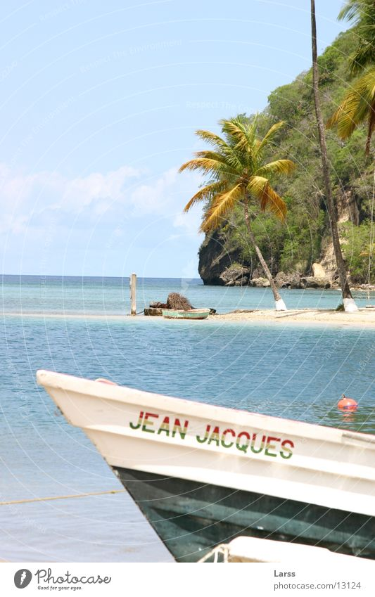 Water Beach Watercraft Cuba Palm tree Lesser Antilles St. Lucia Marigot bay