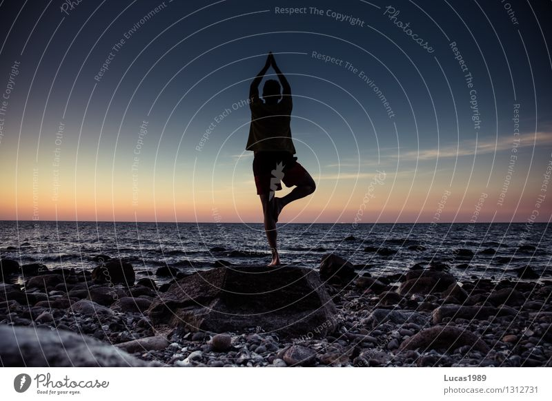 Yoga - Tree Wellness Life Harmonious Well-being Contentment Senses Relaxation Calm Meditation Cure Vacation & Travel Tourism Far-off places Freedom Human being