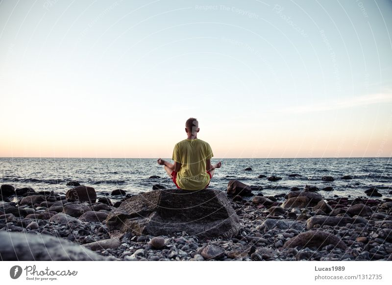 meditation Healthy Wellness Life Harmonious Well-being Contentment Senses Relaxation Calm Meditation Cure Spa Yoga Human being Masculine Young man