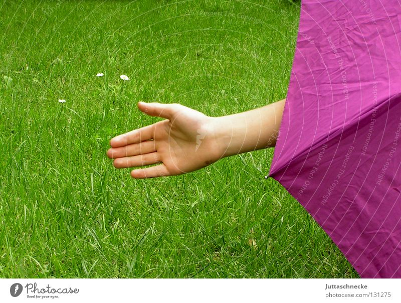 Hand Green Joy Meadow Playing Grass Pink Might Lawn Stop Mysterious Umbrella Hide Hold Backwards Stay