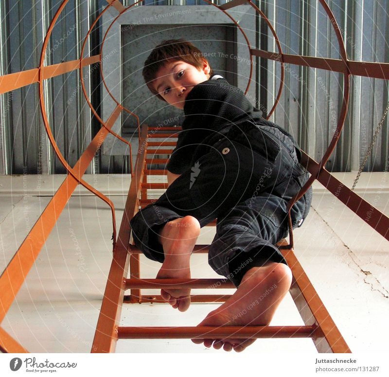 Child Boy (child) Above Tall Success Industry Climbing Discover Ladder Fear of heights Bans Research Exciting Scientist Vertigo Fire ladder