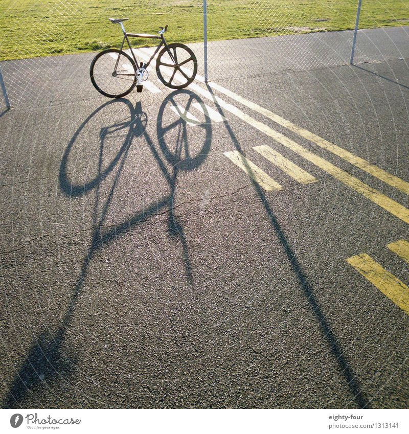 shadow fixy Lifestyle Leisure and hobbies Sports Fitness Sports Training Bicycle Subculture Summer Beautiful weather Deserted Stone Concrete Driving Athletic