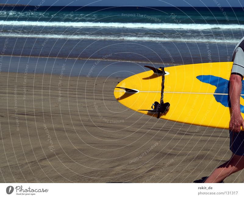 Water Ocean Summer Joy Beach Sand Waves Island Bikini Side Surfing Wooden board Surfer Carrying Aquatics Online