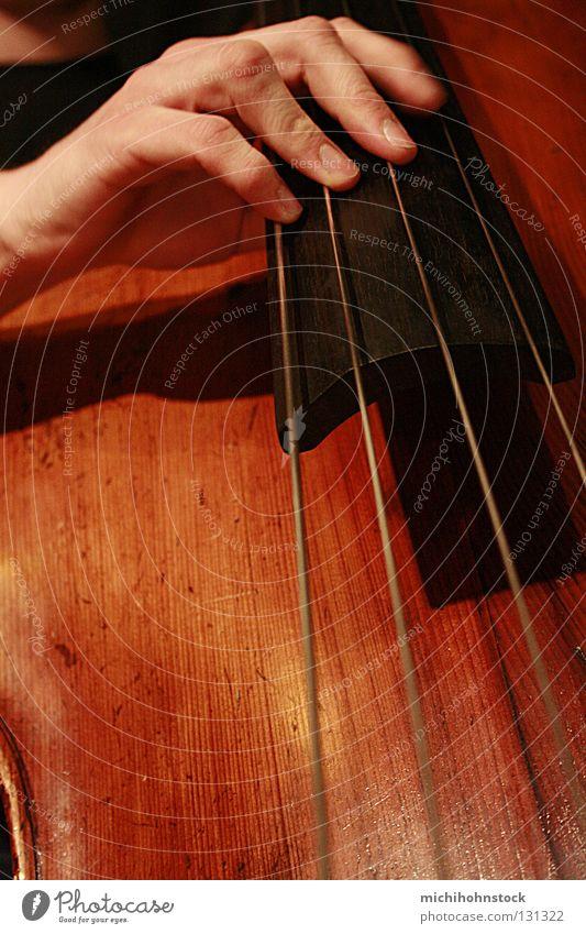 e a d g Double bass Musical instrument string Hand Jazz Brown Wood Live Concert Musician jam session michael derisive stick