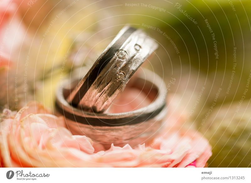 Feasts & Celebrations Future Wedding Attachment Trust Ring Jewellery Accessory Precious Expensive Wedding band
