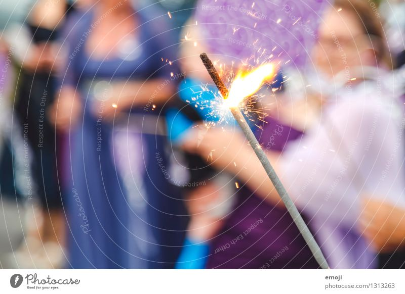 gleam Event Party Feasts & Celebrations Decoration Candle Kitsch Odds and ends Sparkler Exceptional Violet Glittering Flame Colour photo Exterior shot Close-up