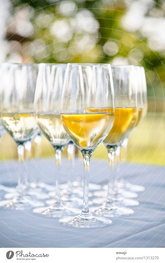 drinks Beverage Alcoholic drinks Wine Sparkling wine Prosecco Champagne Glass Champagne glass Delicious Sweet Feasts & Celebrations Colour photo Exterior shot