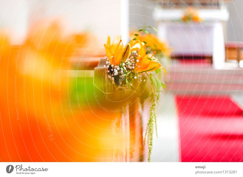 chapel Plant Flower Church Decoration Kitsch Odds and ends Bright Orange Chapel Wedding Wedding ceremony Colour photo Multicoloured Interior shot Close-up
