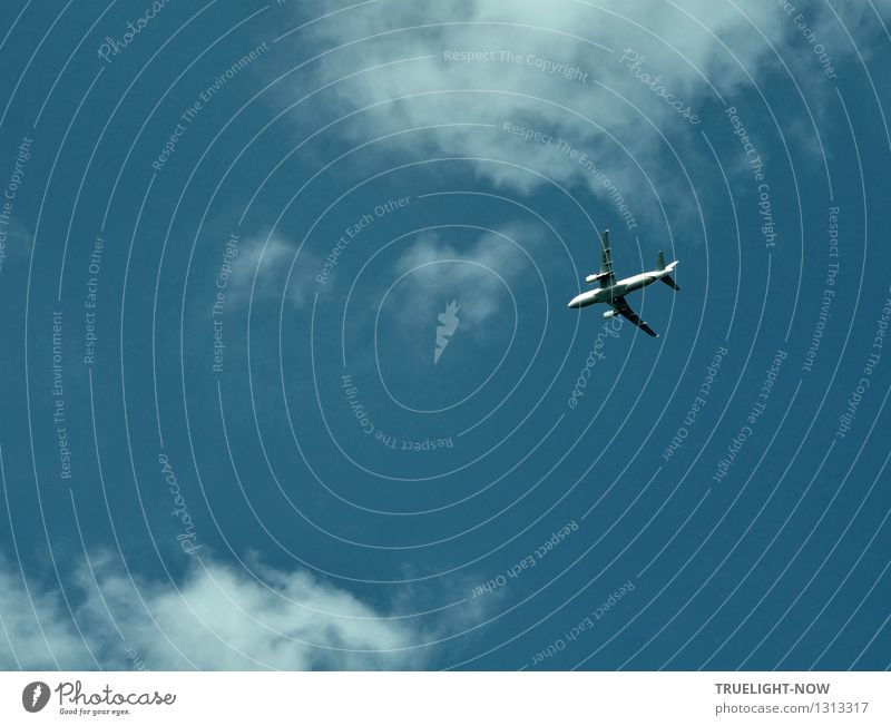 Hurry there... or gone! Vacation & Travel Tourism Far-off places Freedom Flying Aviation Airplane Passenger plane Esthetic Elegant Glittering Infinity Blue