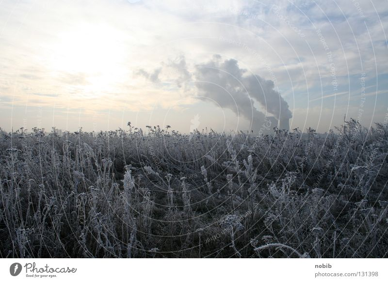 frost Hoar frost Winter Lignite Gray Clouds Field Meadow Cold Smoke Frost snow Sun Electricity generating station cloudy Sky Cooling tower
