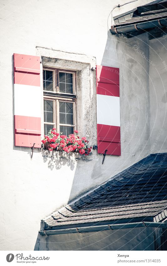 White Red House (Residential Structure) Window Wall (building) Wall (barrier) Roof Shutter Vacation photo Window box