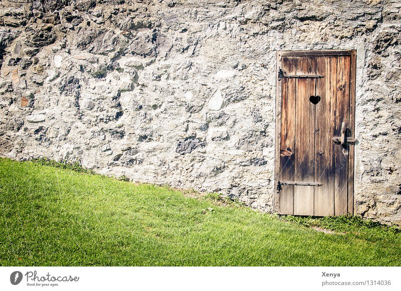 Wooden door Silent place Wall Stone Brown Gray Green Grass Stone wall Toilet Rustic Exterior shot Deserted Day Colour photo Door Wall (barrier) Old
