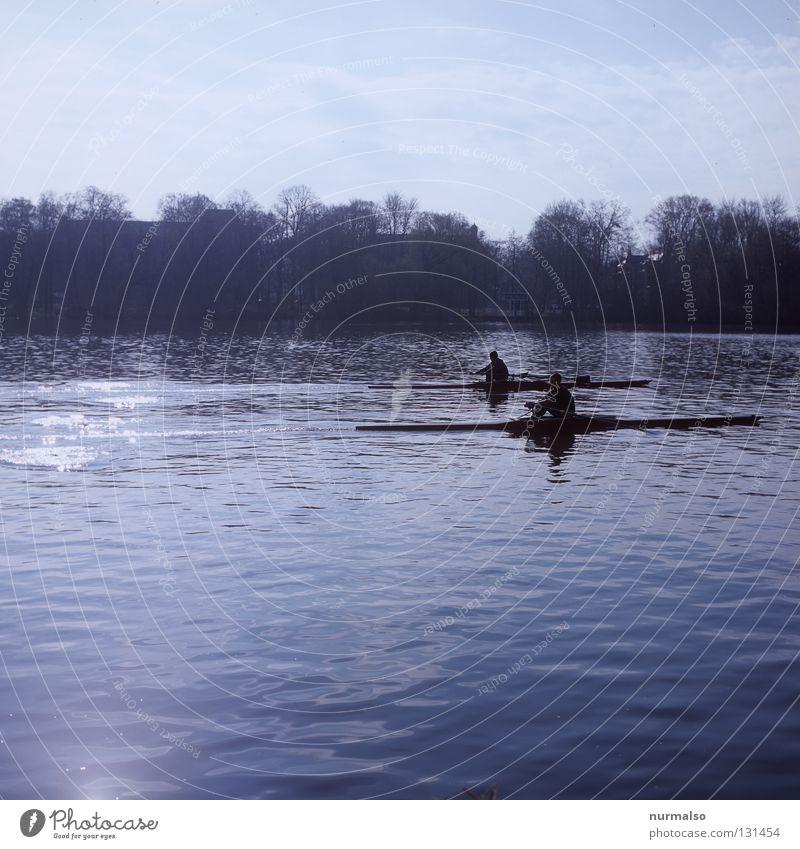 Pull, Pull, Pull Rowing Watercraft Regatta Speed Walking Glide Aquatics Fine Success Loser Potsdam Man Glittering Surface Riverbed Basis Water lentil Sports