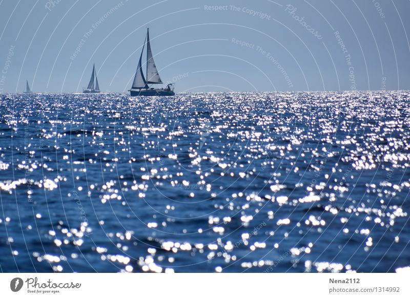 Behind the horizon it goes on Environment Nature Landscape Elements Air Water Sky Summer Climate Beautiful weather North Sea Baltic Sea Ocean Happy Infinity