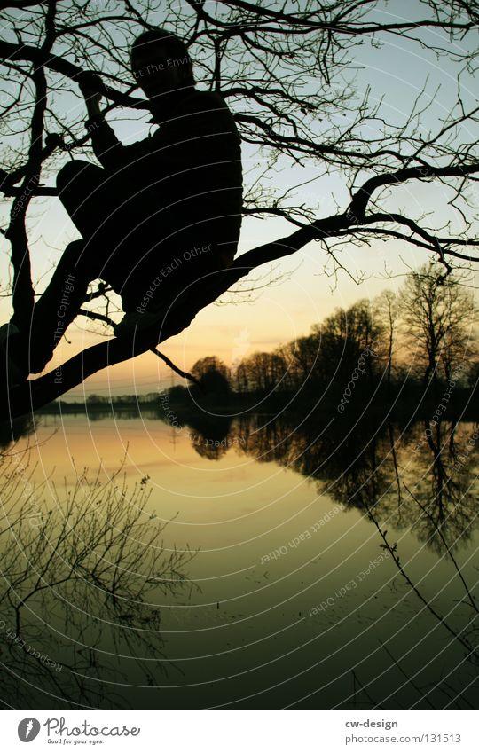 Sky Man Nature Tree Summer Black Calm Relaxation Dark Landscape Gray Lake Think Moody Glass Sit