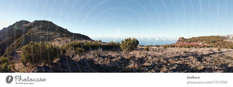 #1315354 Vacation & Travel Trip Adventure Far-off places Freedom Mountain Hiking Nature Landscape Elements Sky Clouds Horizon Flower Bushes Hill Peak