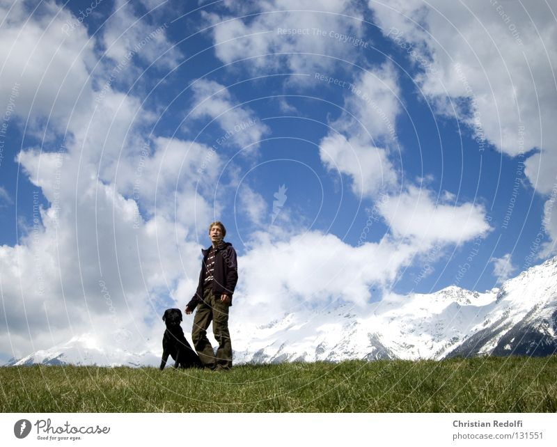Human being Sky Man Blue Green White Sun Dog Clouds Black Animal Meadow Grass Spring Friendship Field