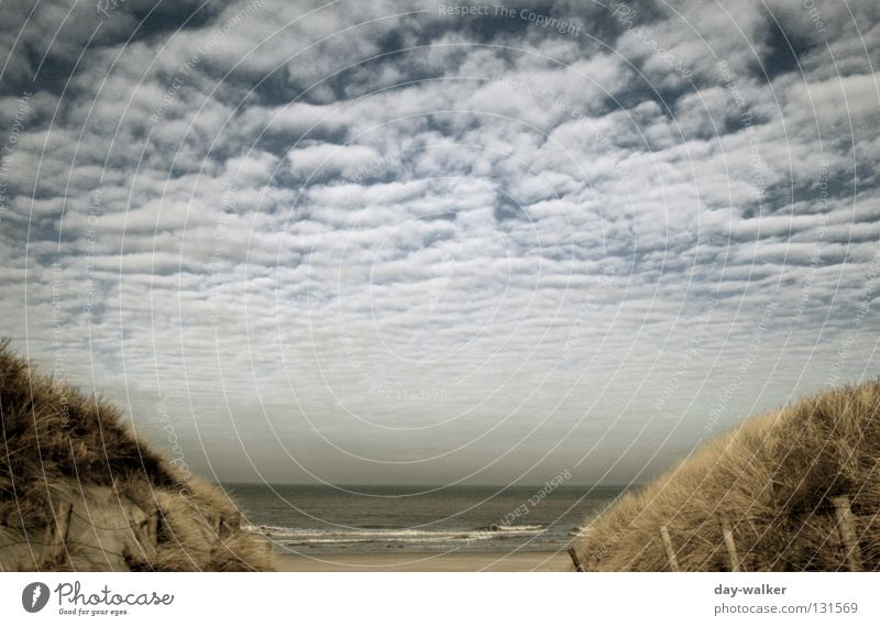 Nature Water Sky Ocean Beach Clouds Far-off places Grass Lanes & trails Lake Sand Waves Coast Island Fence Beach dune