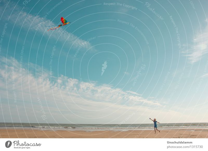 higher, further, free Lifestyle Leisure and hobbies Playing Hang gliding Tourism Summer Beach Ocean Human being Child Infancy Landscape Wind Movement Flying