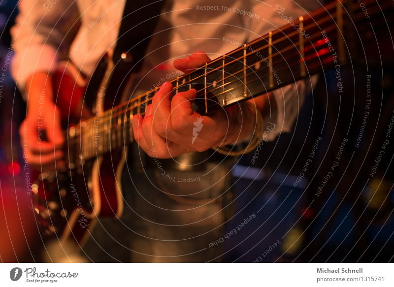 solo Event Music Concert Musician Guitar Musical instrument string Electric guitar Rock music Authentic Natural Emotions Passion Honest Inspiration Moody