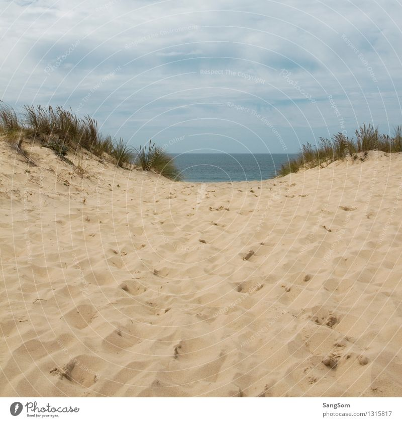 Dune landscape with a view of the Atlantic Ocean Vacation & Travel Far-off places Summer Summer vacation Beach Waves Nature Landscape Sand Water Sky Clouds