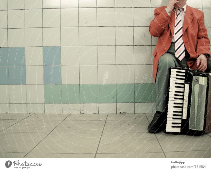 rolling home Music Musician Accordion Man hand pull instrument Musical instrument Underpass hand harmonica goat organ hand organ physical harmonica Human being