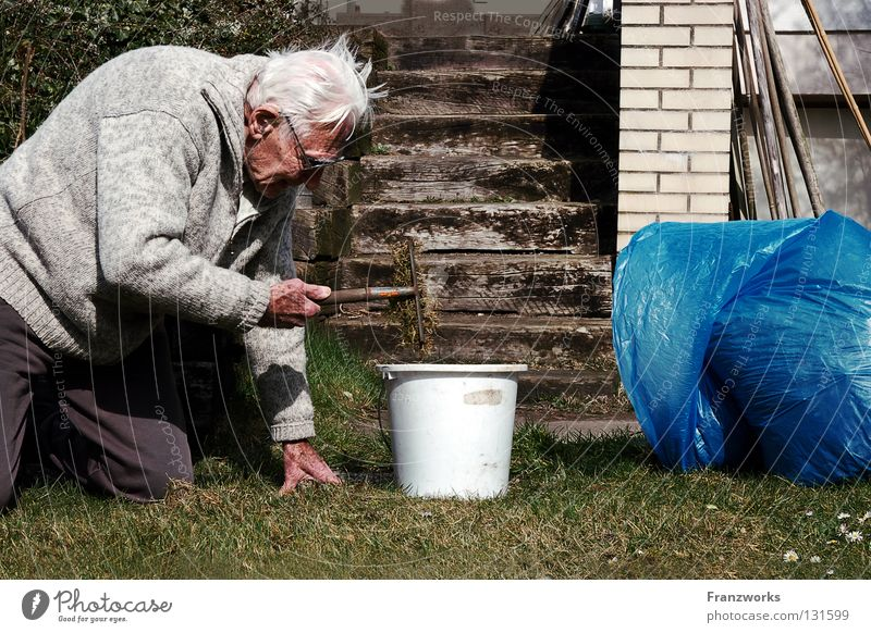 there is still much... Grandfather Eyeglasses Gardening Garbage bag Bucket Grass Crouch Rake Force Robust Park Old man Stairs Kneel Joy monzette-punkette