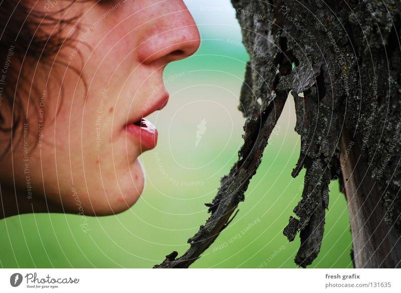 breath the tree Breathe Tree Tree bark Nature Detail Face