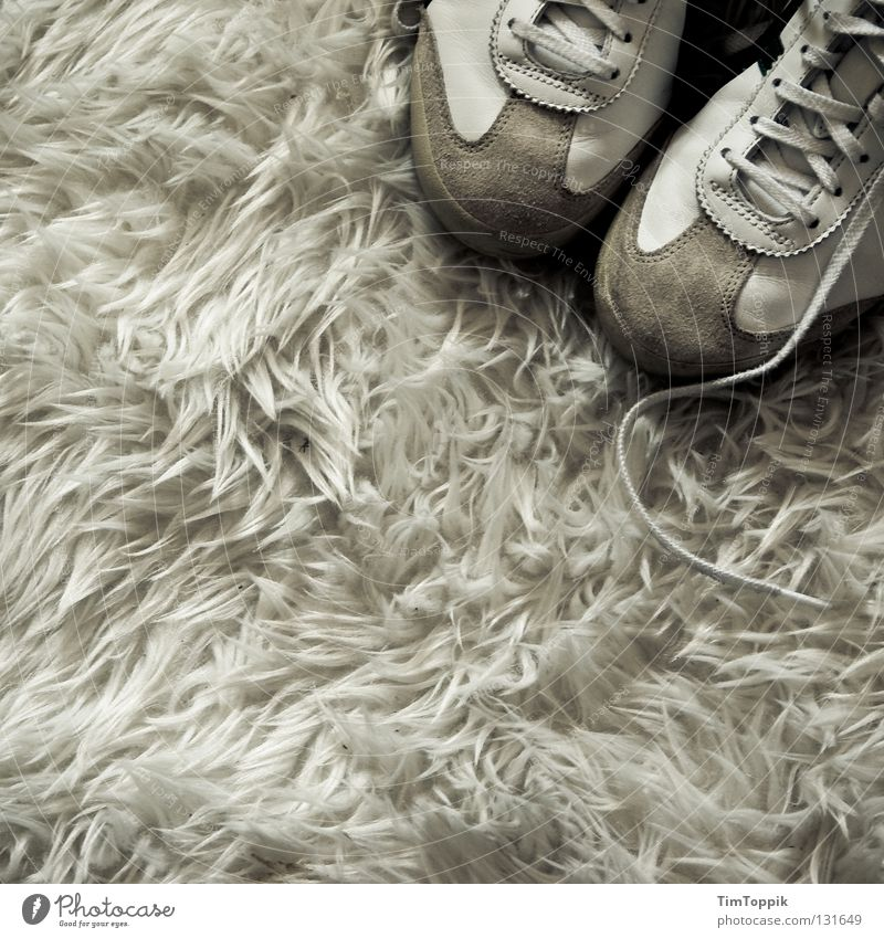 White Footwear Interior design Clothing Soft Living room Sneakers Carpet Seventies Bushy Shoelace Tasteless Flock carpet