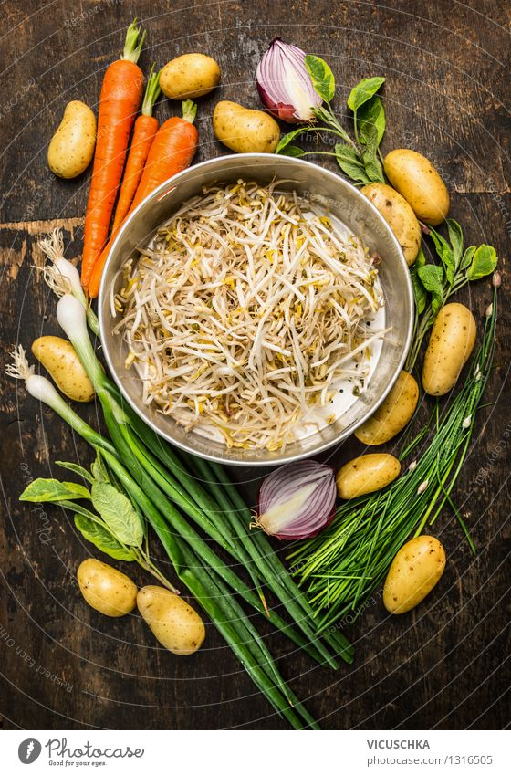 Sprouts in a sieve with fresh organic vegetables Food Vegetable Grain Nutrition Lunch Dinner Organic produce Diet Style Design Healthy Eating Life Garden Table