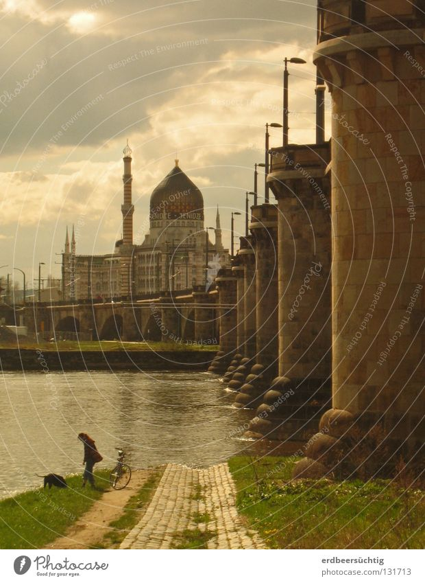 1001 nights in Dresden Factory Human being Water Sky Clouds Warmth River Industrial plant Bridge Dog Moody Column Elbe cigarette factory Ambience Evening Shadow