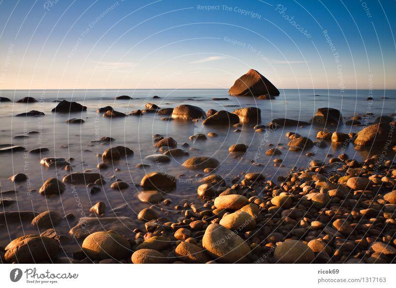 Baltic coast Nature Landscape Rock Coast Baltic Sea Ocean Stone Blue Romance Idyll Vacation & Travel Tourism Sunset Stone block Sky Rügen Lohme