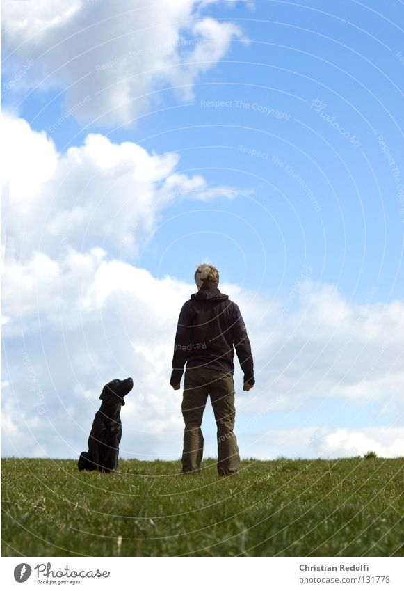 man with dog ..... Man Friendship Field Hill Grass Dog Labrador Meadow Clouds Spring day To go for a walk Green Black White Animal dog owners master Human being