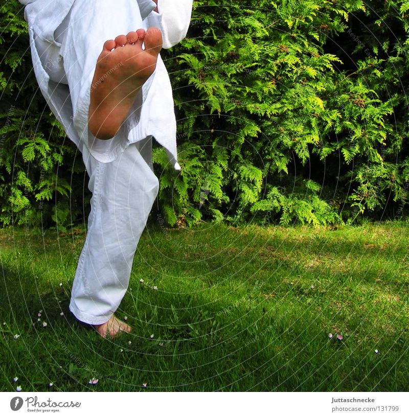 In balance Karate Judo Martial arts White Green Practice Kick Jump Combat dress Footstep Tread Japan Samurai Contentment Beat Fighter Karateka Adversary